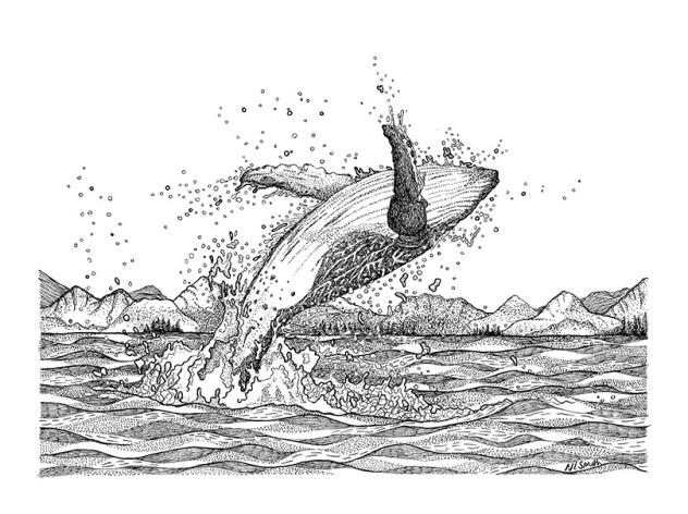 whale naomi smith